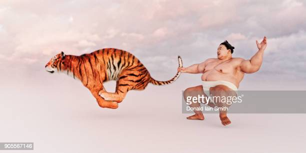 Sumo wrestler holding tiger by the tail