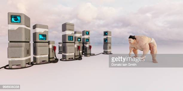 sumo wrestler in readiness opposing supercomputers in empty landscape - 相撲 ストックフォトと画像
