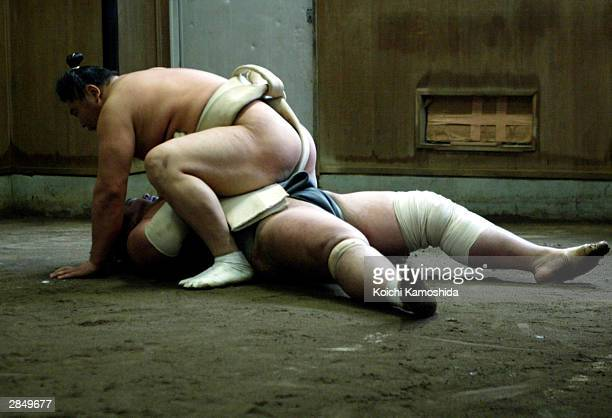 Sumo wrestler Kyokushuzan of Mongolia ranked Maegashira goes on top of his practice partner after knocking him down during the first workout of the...