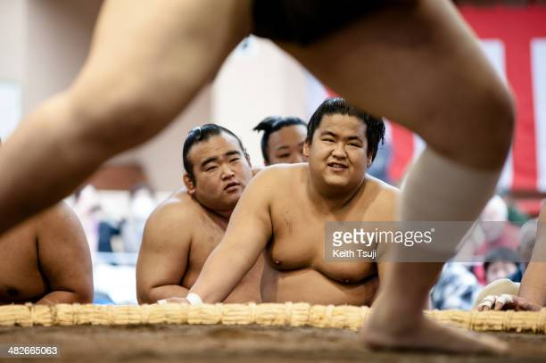 Sumo wrestlers are seen during warm up at the Ceremonial Sumo Tournament or Honozumo at the Yasukuni Shrine on April 4 2014 in Tokyo Japan