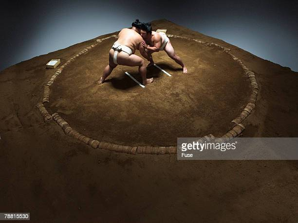 Sumo Wrestlers Facing Off in Ring