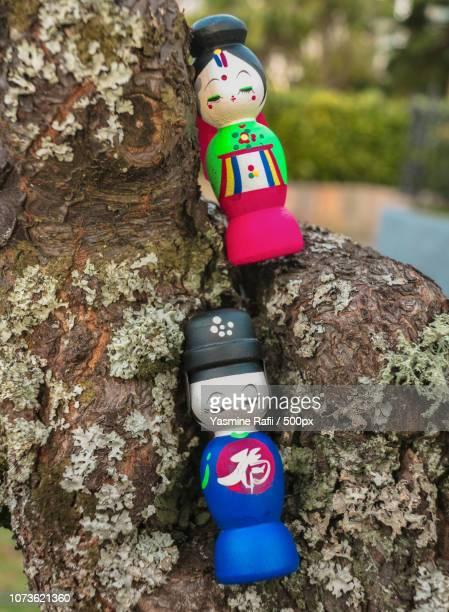 Sun and Kim climb trees.