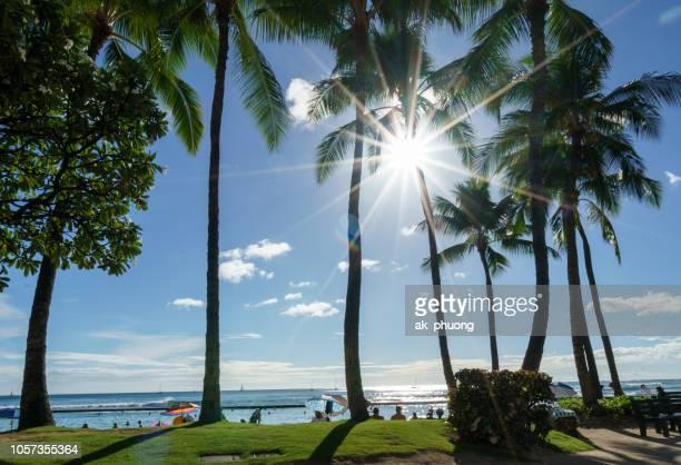 sun beam in the morning on waikiki beach - ハワイ諸島 ストックフォトと画像