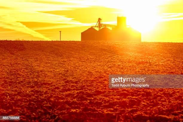 sun behind the silo - 休耕田 ストックフォトと画像