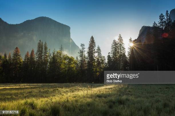 Sun breaking through trees with mountains in background