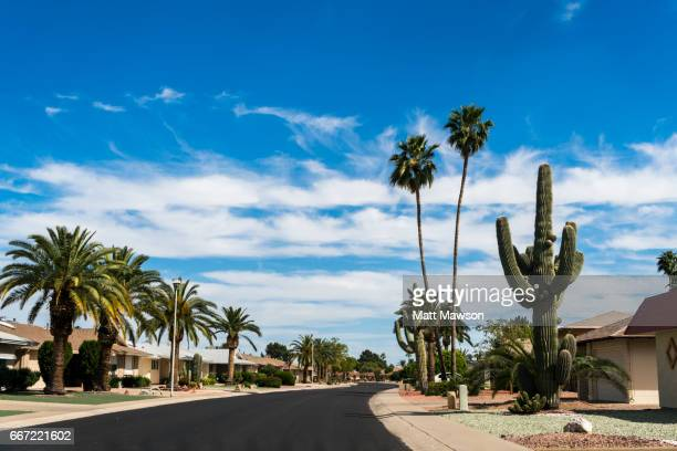 sun city. phoenix. maricopa county. arizona - phoenix arizona stock photos and pictures