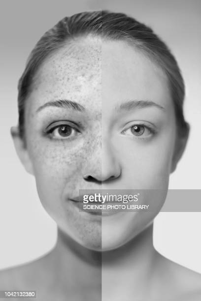 sun damage, composite image - toned image stock pictures, royalty-free photos & images