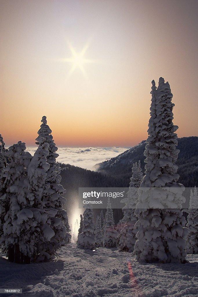 Sun dog at Red Mountain , British Columbia , Canada : Stockfoto