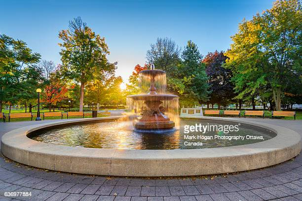 sun drenched fountain - fountain stock pictures, royalty-free photos & images