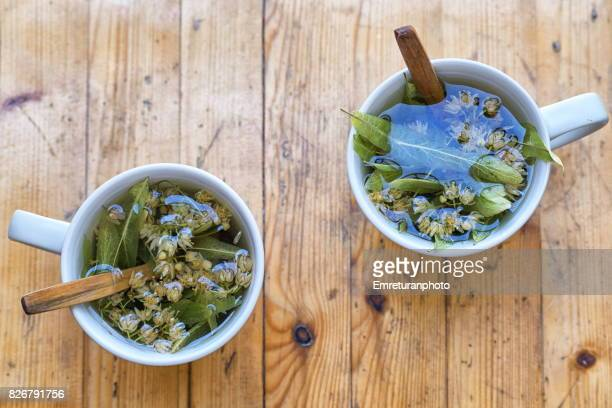 sun dried linden tea.. - herbal tea stock pictures, royalty-free photos & images