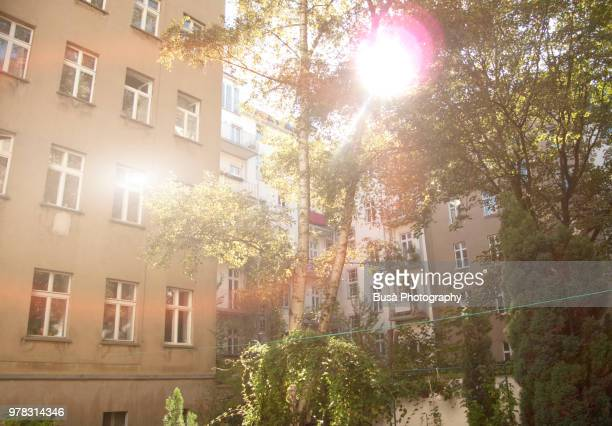Sun filtering through trees in a typical East Berlin courtyard. District of Prenzlauerberg, Berlin, Germany