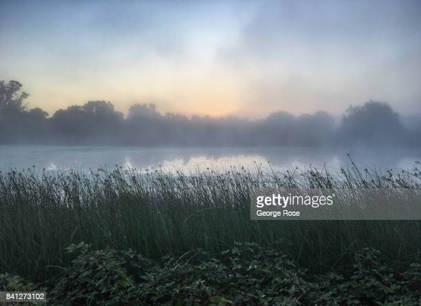 Sun filters through the Russian River Valley fog at Laguna de Santa Rosa on August 25 near Santa Rosa California Following a record winter rainfall...