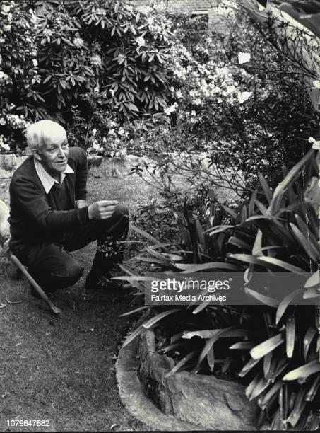 Sun gardening expert Mr Tom Edmondson at his home at Spencer St Killara on 12875 August 12 1975