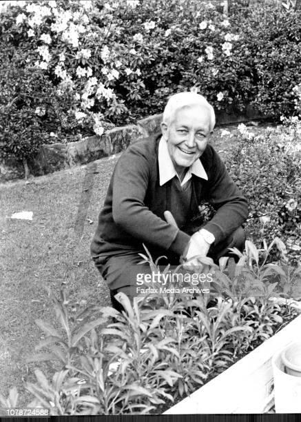 Sun Gardening Expert Mr Tom Edmundson at his home in Spencer St Killara on 12875 August 12 1975