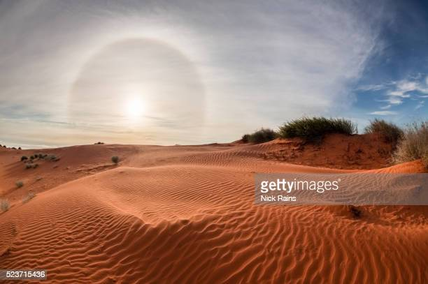 Sun Halo in Sturts Stony Desert