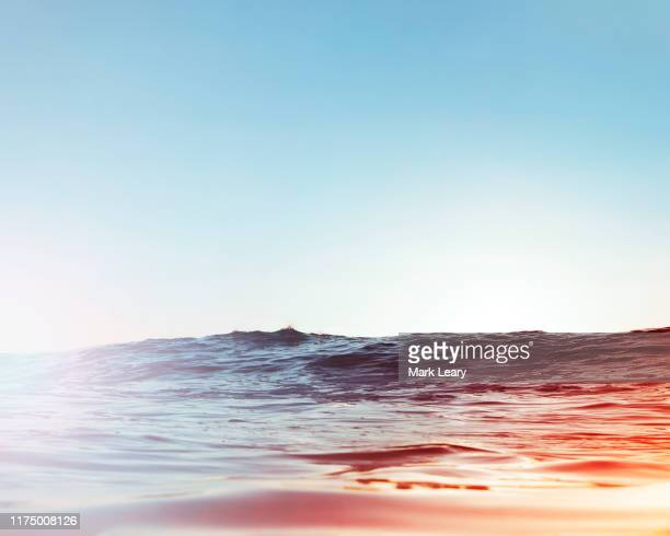 sun hits the water as a wave rolls past - 太陽フレア ストックフォトと画像