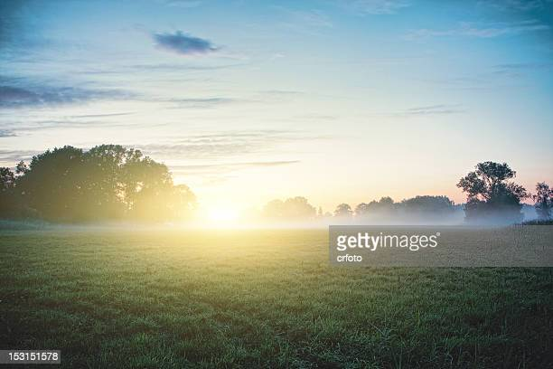 sun kisses fog - landschaft stock-fotos und bilder