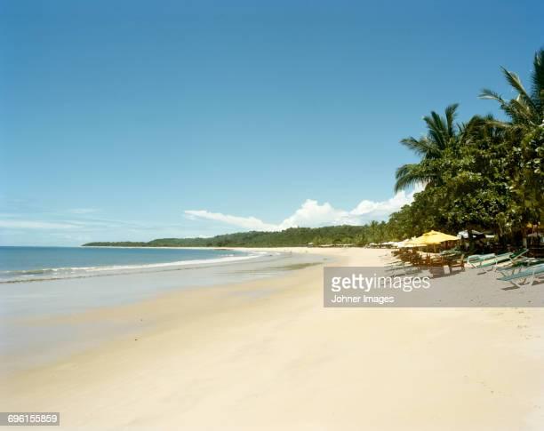 Sun loungers on tropical beach