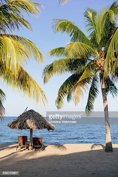sun loungers - christine wehrmeier stock photos and pictures