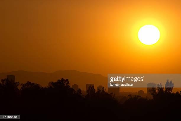 フェニックスの太陽を浴びながら