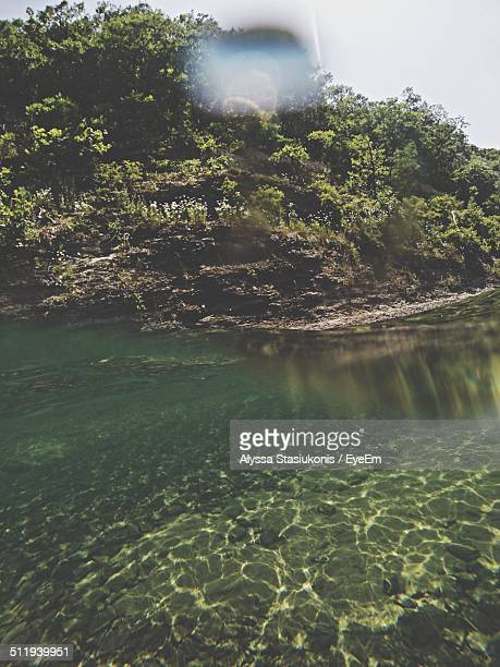 sun reflection in lake water - lake bottom stock photos and pictures