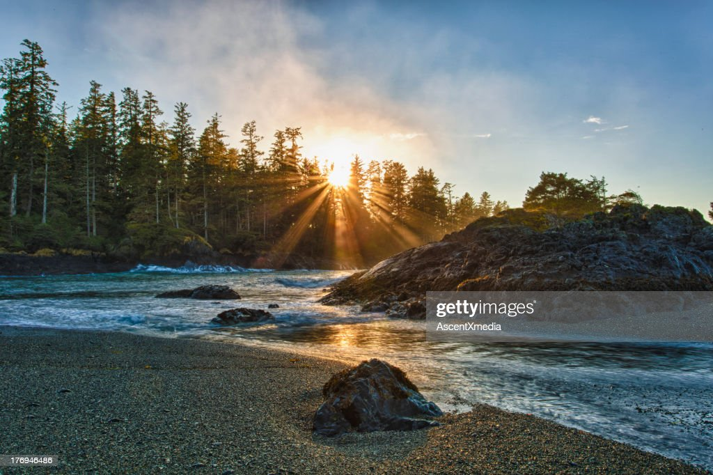 Sun rises above tranquil ocean shoreline : Stock Photo