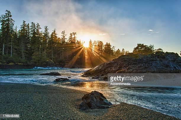 Sun rises above tranquil ocean shoreline