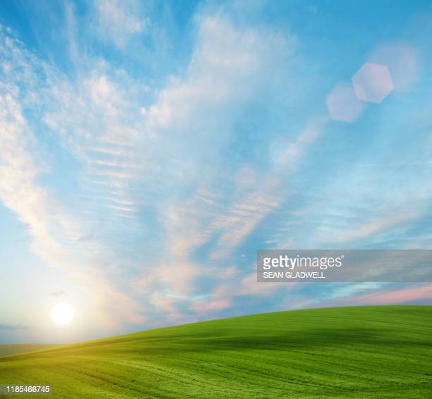 sun rising over fields - zonnig stockfoto's en -beelden