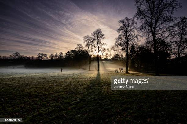 sun rising over frosty park - west midlands stock pictures, royalty-free photos & images