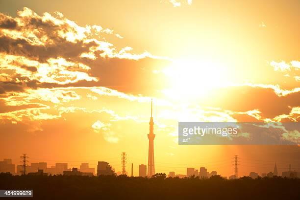 Sun Setting at Tokyo SkyTree