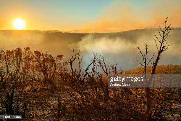 sun setting in burnt smouldering mountain landscape with smoke filled valley after forest fire, bushfire in blue mountains, australia - australia fotografías e imágenes de stock