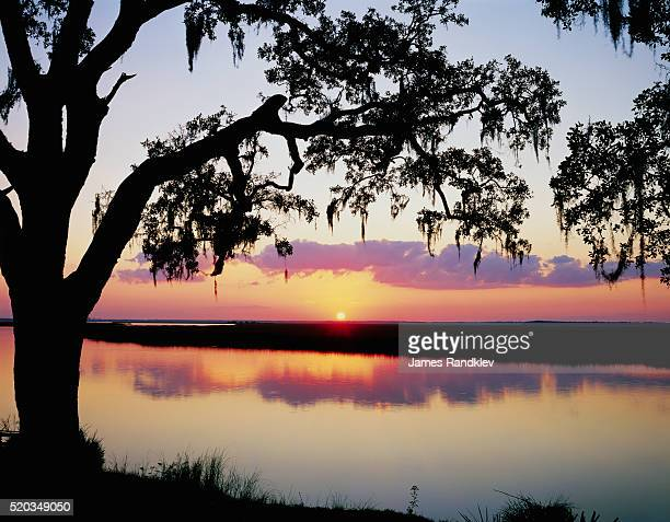 sun setting over brickhill river - spanish moss stock pictures, royalty-free photos & images