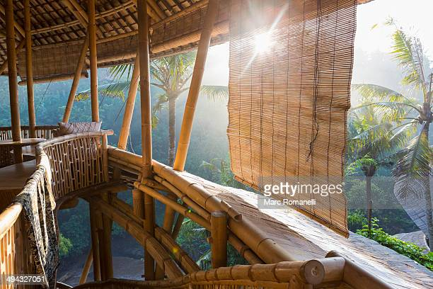 Sun shining on bamboo treehouse