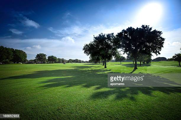 sun shining on golf fields - backlit with shadows - green golf course stock pictures, royalty-free photos & images