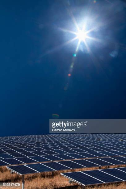 Sun shining over field of solar panels