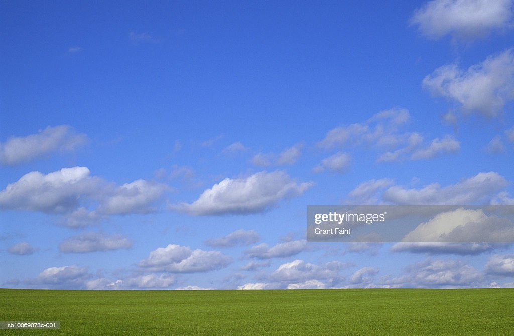 Sun shining over grassy field : Stockfoto