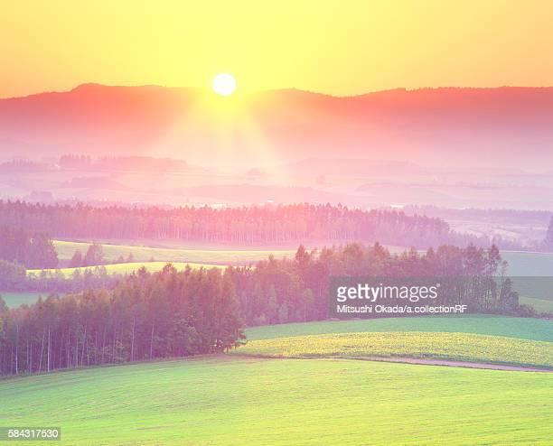 Sun shining over landscape
