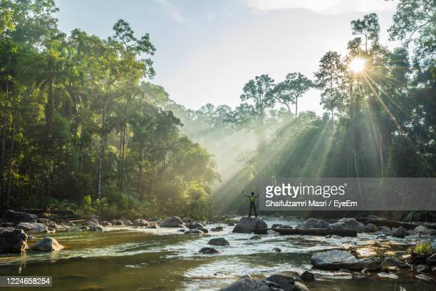 sun shining over trees and mountains against sky - shaifulzamri stock pictures, royalty-free photos & images
