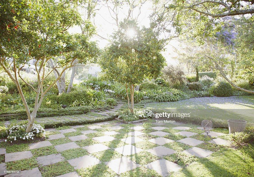 太陽輝くからの木の庭園 : ストックフォト