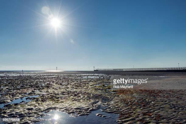 Sun Star at Littlehampton Beach