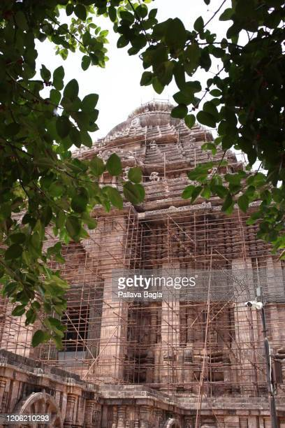 sun temple at konark a master piece in architecture dedicated to the sun god surya - accouplement cheval photos et images de collection