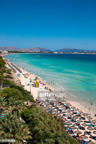 sun umbrellas and people on playa de muro beach - muro stock photos and pictures
