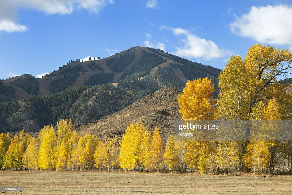 Sun Valley Idaho Bald Mountain : Stock Photo