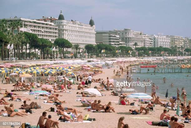 sunbathers filling a cannes beach - marina wheeler foto e immagini stock