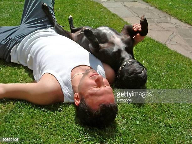 un bain de soleil 2: - bronzage humour photos et images de collection