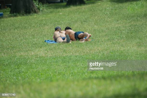 sunbathing in a park - skimpy bathing suits stock pictures, royalty-free photos & images