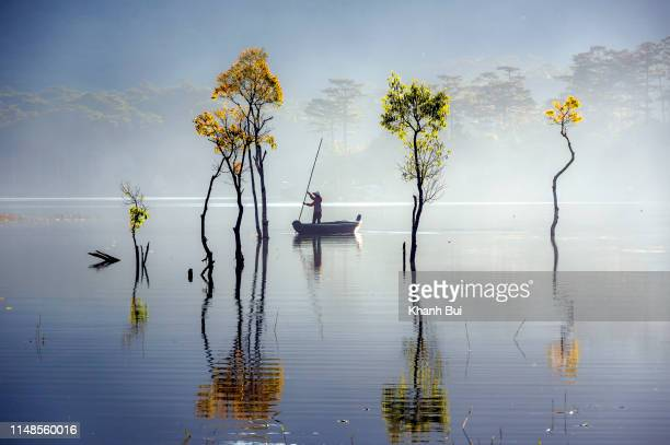 sunbeam and trees reflected on the lake at springtime - ho chi minh city stock pictures, royalty-free photos & images