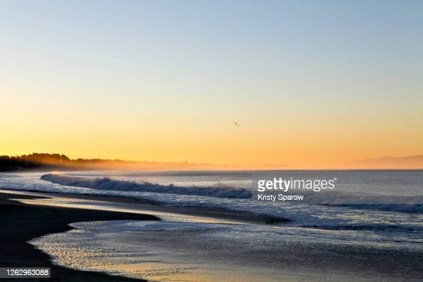 sunbeam at dawn- stock photo - kristy sparow stock pictures, royalty-free photos & images