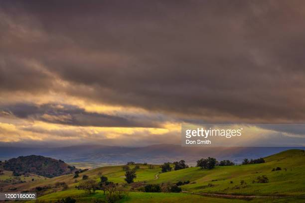 sunbeams over coastal valley - don smith stock pictures, royalty-free photos & images