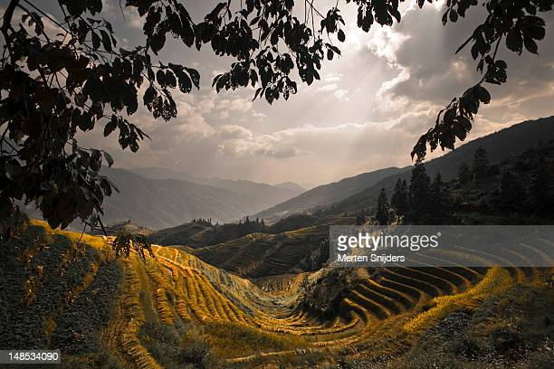 Sunbeams over valley and Longji rice terraces.